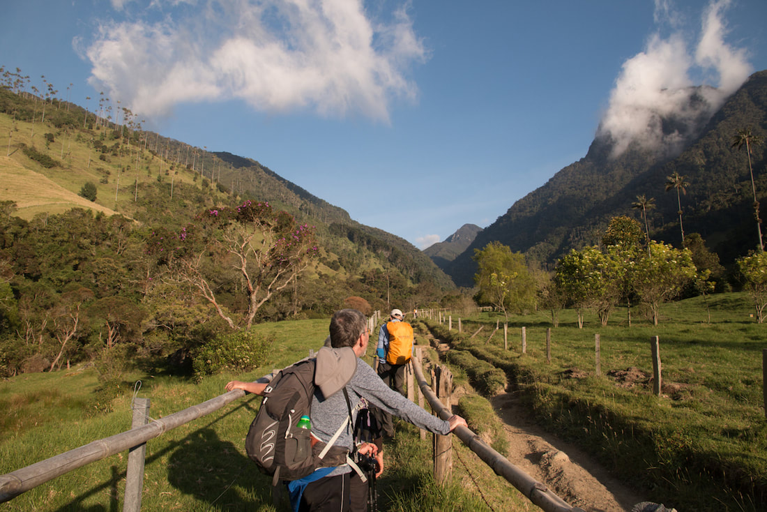 Starting the Los Nevados trek from Valle de Cocora